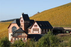 Weinbaudomaene Aveler Tal Trier. You see a wine yard in autumn colours with the wine-growing-estate in Trier royalty free stock image