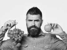 Weinbauer mit ernstem Gesicht hält Trauben und rote Frucht Lizenzfreie Stockbilder