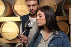 Weinbauern, die Wein schmecken Stockbilder