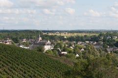 Weinberg in Frankreich Lizenzfreie Stockbilder