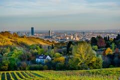 Weinberg im Herbst vor den Skylinen von Wien in Österreich Stockfotografie