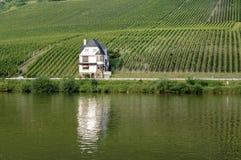 Weinberg- und Ausgangsweinbauer auf Mosel-Fluss Stockbilder