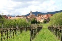 Weinberg und das Dorf Mittelbergheim, Frankreich Stockfotos