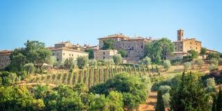 Weinberg und Dorf von Montalcino, Toskana Italien stockfotografie