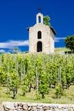 Weinberg und Kapelle in Frankreich Lizenzfreie Stockfotos