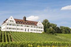 Weinberg und Weinkellerei Stockfoto