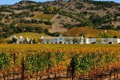Weinberg und Weinkellerei, Sonoma lizenzfreie stockfotos