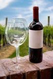 Weinberg-Wein-Flasche Stockfoto