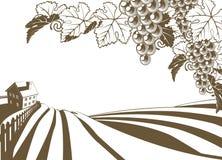 Weinberg-Weinstock-Bauernhof-Illustration Lizenzfreie Stockfotografie