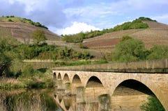 Weinberge auf Berghängen und alter Brücke Stockfotografie