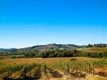 Weinberge in den Hügeln von Toskana stockbilder