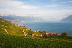 Weinberge der Lavaux-Region, die Schweiz Stockfotografie