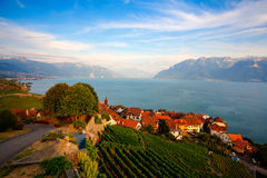 Weinberge der Lavaux-Region, die Schweiz Stockbilder