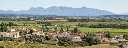Weinberge mit Montserrat-Spitzen am Hintergrund Lizenzfreies Stockfoto