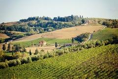 Weinberge mit Steinhaus, Toskana, Italien lizenzfreie stockfotografie