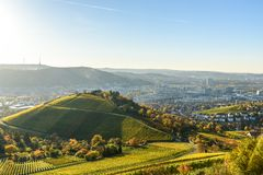 Weinberge in Stuttgart - sch?ne Weinregion im S?den von Deutschland lizenzfreie stockbilder