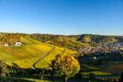 Weinberge in Stuttgart, Uhlbach am Neckar-Tal - sch?ne Landschaft im autum in Deutschland stockfoto
