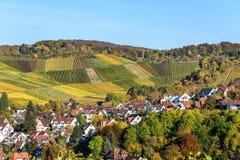 Weinberge in Stuttgart, Uhlbach am Neckar-Tal - sch?ne Landschaft im autum in Deutschland lizenzfreie stockfotografie