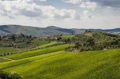 Weinberge in Toskana, Italien Stockfoto