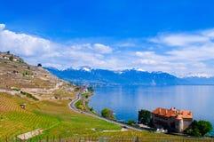 Weinberge und Dorf in Lavaux gegen Geneva See, die Schweiz Lizenzfreies Stockfoto