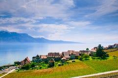 Weinberge und Dorf in Lavaux gegen Geneva See, die Schweiz Lizenzfreies Stockbild