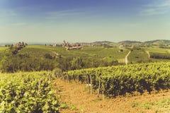 Weinberge und Hügel mit Sonne Lizenzfreie Stockfotos