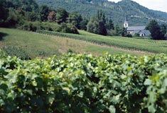 Weinberge und Kirche gestalten im Wirsing, Frankreich landschaftlich Stockfotos