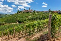 Weinberge und Kleinstadt auf dem Hügel. Lizenzfreie Stockfotos
