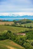 Weinberge von Langhe, Piemont, UNESCO-Welterbe Lizenzfreie Stockfotografie
