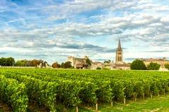 Weinberge von Saint Emilion, Bordeaux Wineyards in Frankreich stockfoto