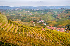 Weinberghügel Langhe Barolo gestalten, Piemont, Italien landschaftlich Lizenzfreie Stockfotos