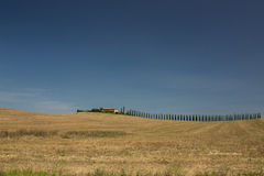 Weinberglandhaus in Toskana Italien Lizenzfreie Stockfotografie