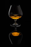 Weinbrandglas Stockbild