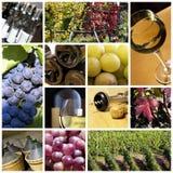 Weincollage Stockfotografie
