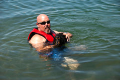 Weiner dog learning to swim. Man teaching a dachshund how to swim Stock Images