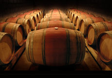 Weinfässer Lizenzfreies Stockbild