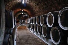 Weinfässer im Keller lizenzfreie stockbilder
