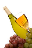 Weinflasche und Glas Wein mit den Trauben getrennt stockbild
