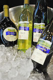 Weingarten silvaner and riesling Stock Photo