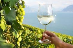 Weinglas in der Hand Stockfoto