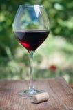 Weinglas mit Korken Lizenzfreie Stockfotografie
