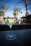 Weinglas mit Palmereflexionen Stockbilder