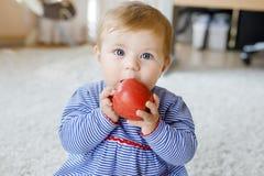 Weinig aanbiddelijk babymeisje die grote rode appel eten Vitamine en gezond voedsel voor kleine kinderen Portret van mooi kind royalty-vrije stock afbeelding