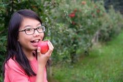 Weinig Aziatisch meisjeskind houdt een rode appel in boomgaard royalty-vrije stock afbeeldingen
