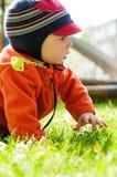 Weinig babyjongen die en het park lopen onderzoeken royalty-vrije stock fotografie