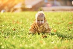 Weinig babyjongen die onder de gevallen bladeren op het groene gazon kruipen bij zonnige dag royalty-vrije stock afbeelding