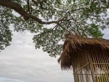 Weinig bamboehut onder de boom Royalty-vrije Stock Foto