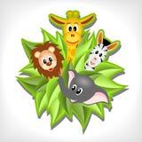 Weinig beeldverhaalolifant, giraf, leeuw en zebra Stock Foto