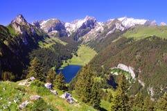 Weinig blauw meer in de Zwitserse Alpen Stock Foto's