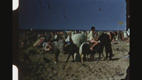Weinig Blond Meisje die Pony At berijden een Overvol Strand stock footage
